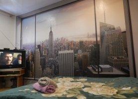 Снять - фото. Снять однокомнатную квартиру посуточно без посредников, Петрозаводск, улица Свердлова, 3 - фото.